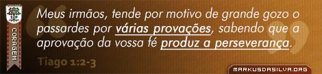 Coragem » Tiago 1:2-3 » Meus irmãos, tende por motivo de grande gozo o passardes por várias provações, sabendo que a aprovação da vossa fé produz a perseverança. | markusdasilva.org